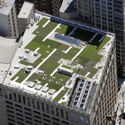 Green Roofing/Rooftop Amenities Projects